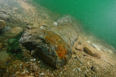 Half buried cannon on Chesil site